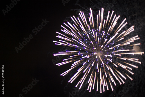 Fireworks of large flower rising out in the night sky