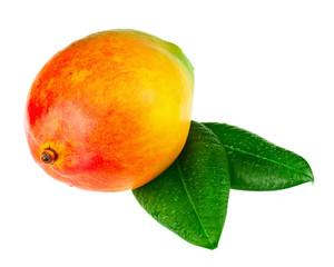 Fresh mango fruit with green leaves isolated on white background