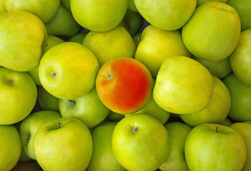 Red apple in center of green apples