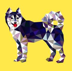 Siberian husky dog triangle low polygon style