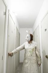 Rabbit in door
