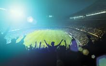 """Постер, картина, фотообои """"crowded football stadium"""""""