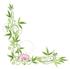 Lotus, Seerose, Bambus