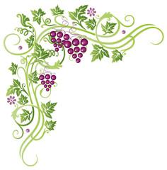 Wein, Weinreben, Blätter