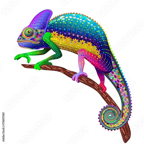 chameleon-fantasy-rainbow-colors
