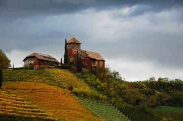 Castel Guardia fra i vigneti