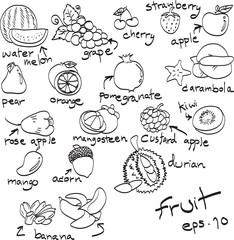 hand drawn set of fruit, doodles