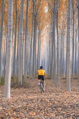 corriendo en bici por bosque en otoño