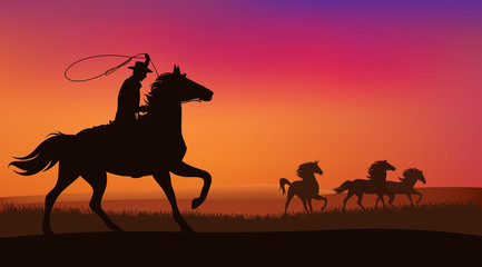 cowboy chasing the herd of wild horses at sunset