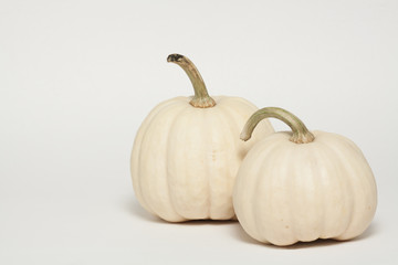 Albino Pumpkins