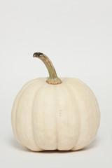 Albino Pumpkin