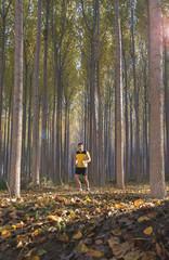 corriendo por bosque