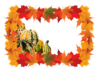 Colorful Frame with Maple leaves and Pumpkins