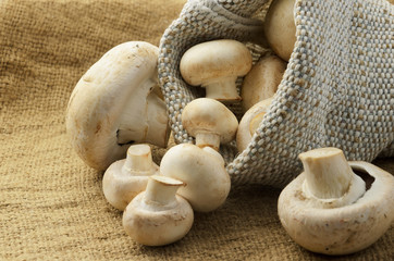 Champignon mushrooms in canvas bag