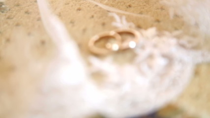 Two gold wedding rings on a white veil of the bride.