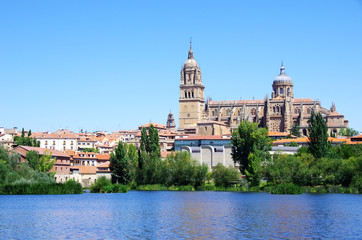 cathedral of Salamanca and Tormes river