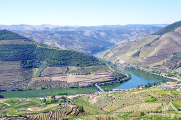 Landscape of  Douro vineyards, Pinhão, Portugal
