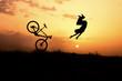 çılgın bisiklet sürücüsü