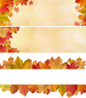 canvas print picture - Herbstlicher MIX