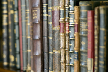 The Wisdom of Books