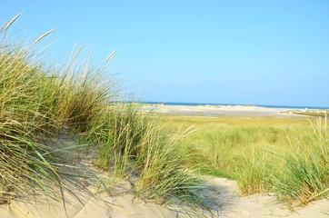 Dünenlandschaft mit Blick auf die Nordsee