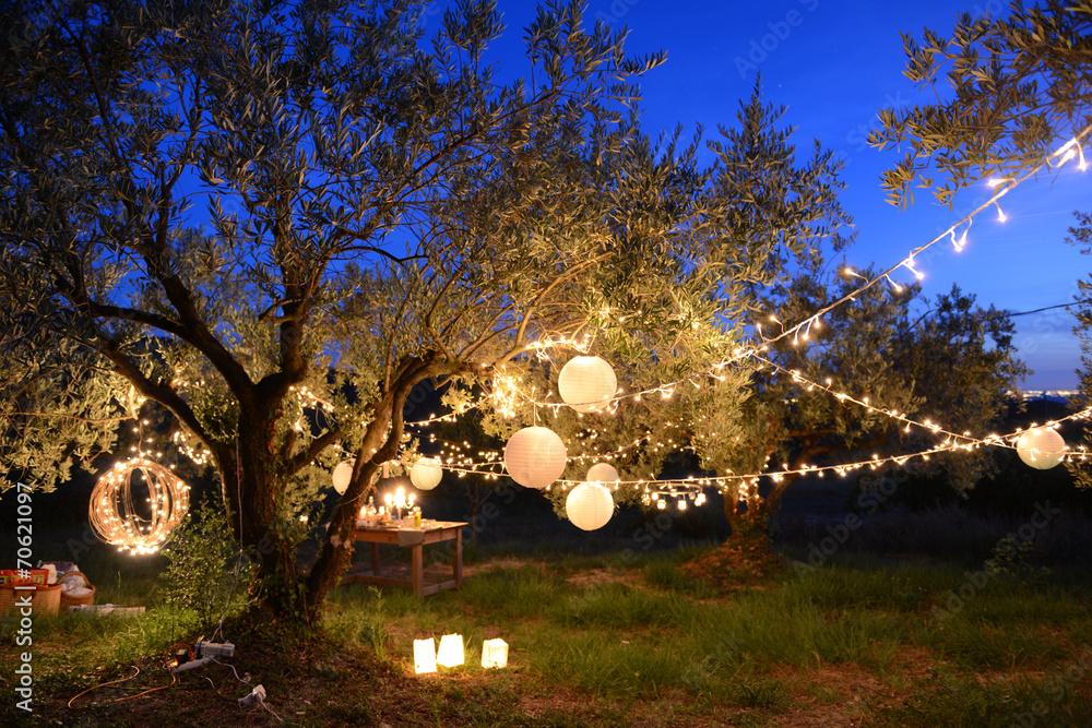 Papiers peints f te nocturne for Jardin nocturne