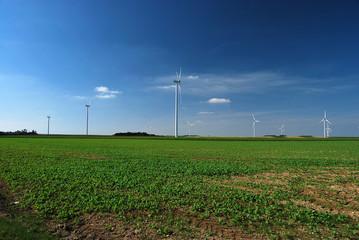 Groupe d'éoliennes dans un champ