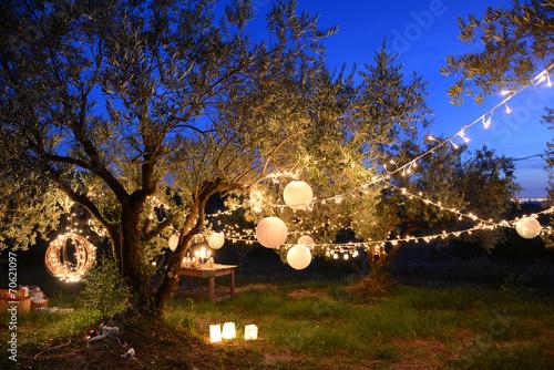 Papiers peints Jardin Fête nocturne