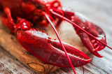Cooked lobster on wooden background