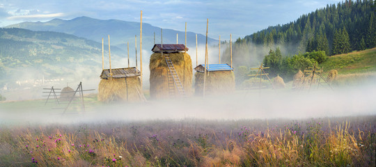Alpine subsistence agriculture