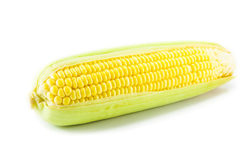 One on ear of corn