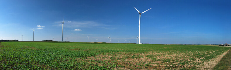 Panorama champ d'éoliennes