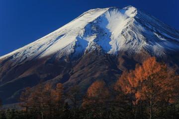 晩秋の富士山