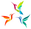 Stylized Hummingbirds - 70626455
