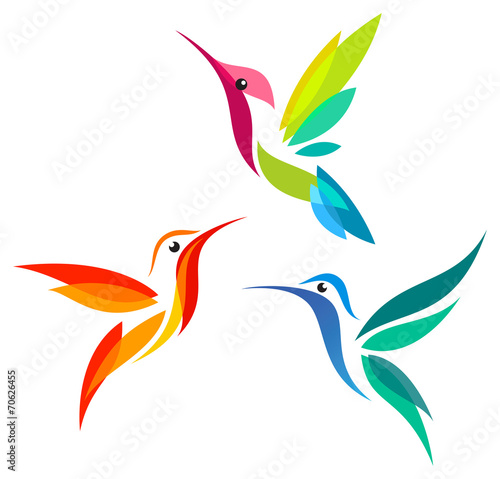 Stylized Hummingbirds - 70626455