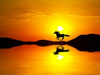 el caballo en la montaña dorada