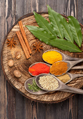 Spices and herbs Over Wood. Cuisine ingredients.