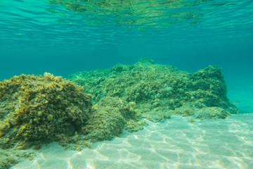 Randonnée sous-marine CORSE