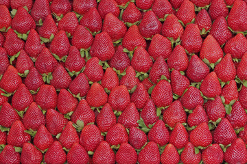 fresh strawberries natural red background