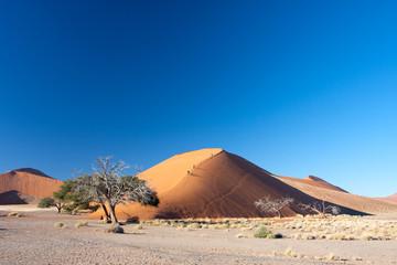dune 45 namibia