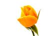 Obrazy na płótnie, fototapety, zdjęcia, fotoobrazy drukowane : yellow rose