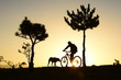 gündoğumunda köpek ile karşılaşan bisikletçi