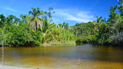 Papiers peints Amérique Centrale Parc national de Cahuita