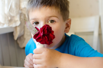 guilty boy with a rose