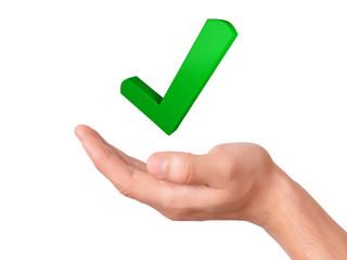 hand holding check mark icon. success concept