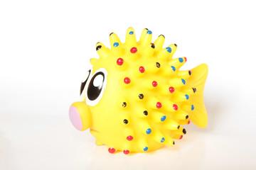 Yellow Fish - Giallo Pesce