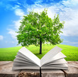 Tree and book