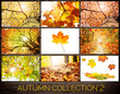Autumn Collection 2