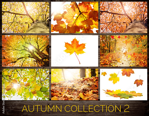 Poster Landschappen Autumn Collection 2