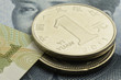 人民币 Renminbi Yuan เหรินหมินปี้ Китайский юань رنمينبي